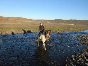 exkurze na koni Island