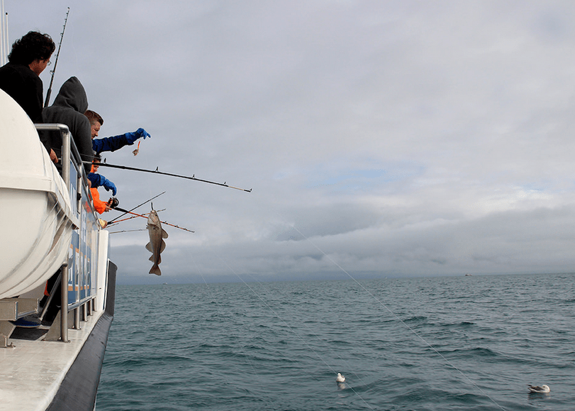 rybolov na lodi na Islandu