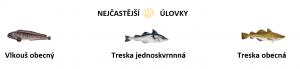 úlovky ryb na Islandu