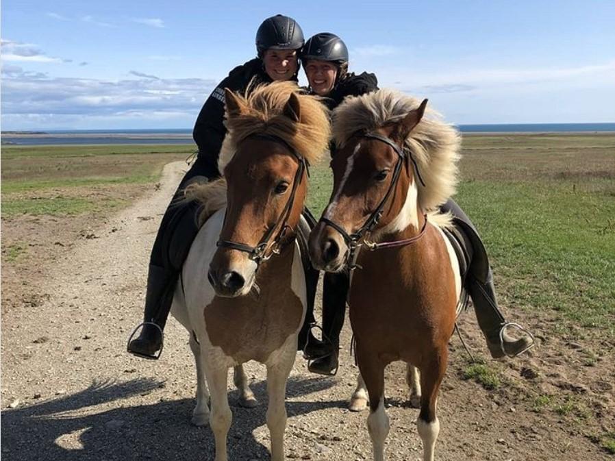 Exkurze na koni na Islandu